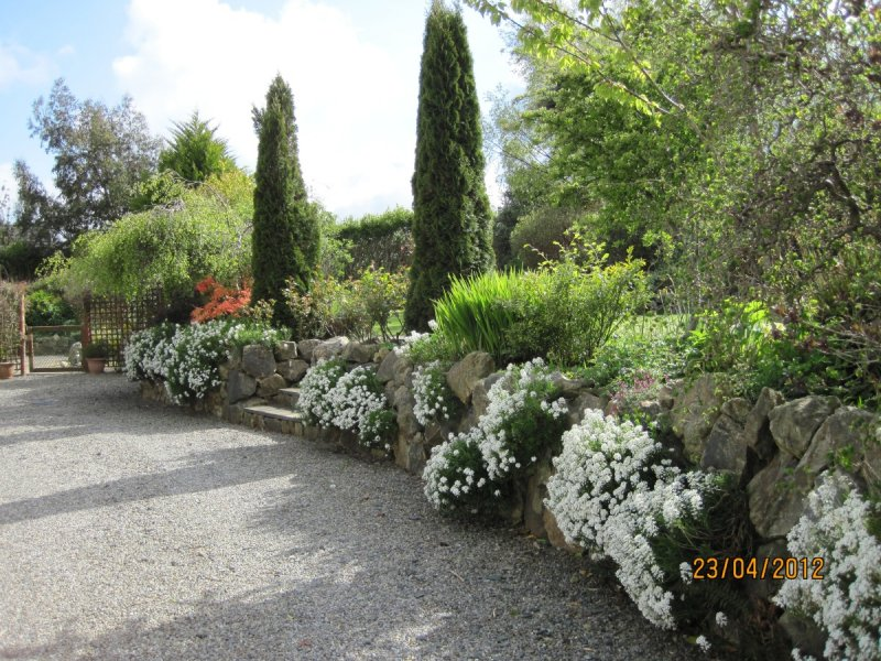 Garden Design Ideas Inspiration Advice for all Styles of Garden