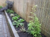 Raised flower bed made from Sleepers