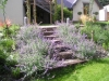 Garden Steps made from Sleepers