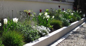 Great Planting Plans