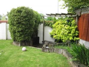 Corner of Garden before new Garden Design