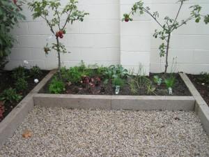 Childrens' Vegtable and Fruit Garden
