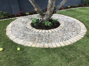 Pebble Design Around Old Apple Tree